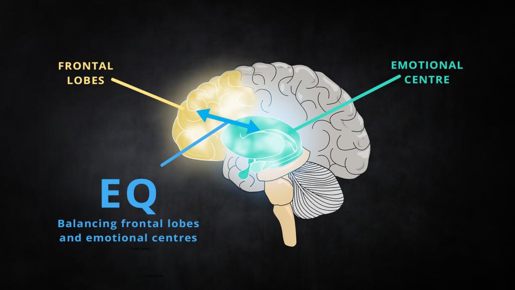 Emotional Centres of the brain